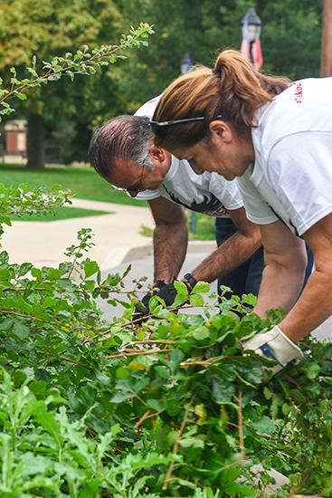 The president helping Paula Moore trim bushes on campus.